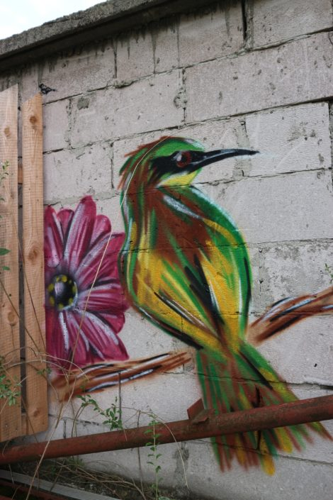 "Let me ""streetart"" some birds on your wall!"
