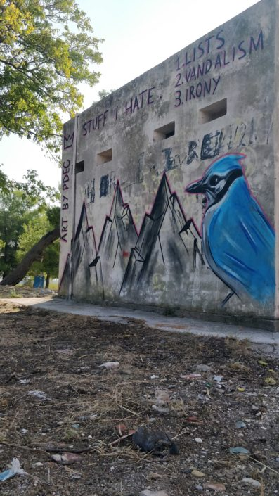 Bird themed graffiti in Croatia. Had fun painting some of my wisdom on the wall