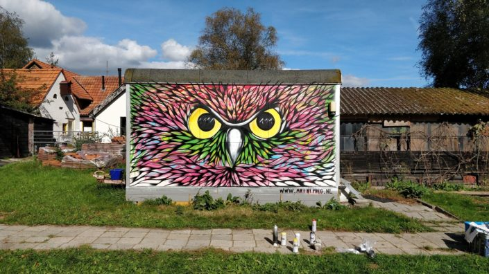 Colorfully spray painted owl graffiti in Heerde